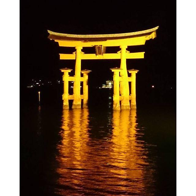 昨晩の厳島神社  大鳥居本日福岡に帰ってきました~ - from Instagram
