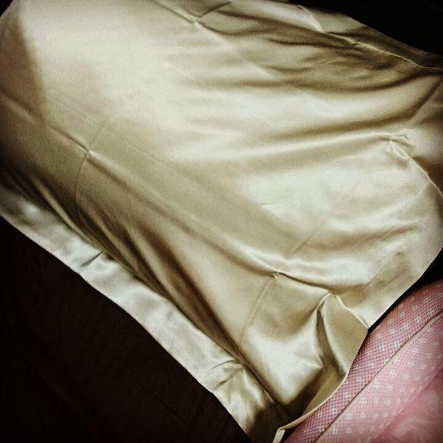 枕カバーをゴールドに替えたのだが、金運上がるやろか?どうせ ぼーずの抜け毛で毛だらけか - from Instagram